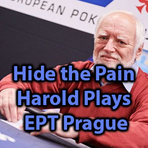 hide the pain harold plays ept prague